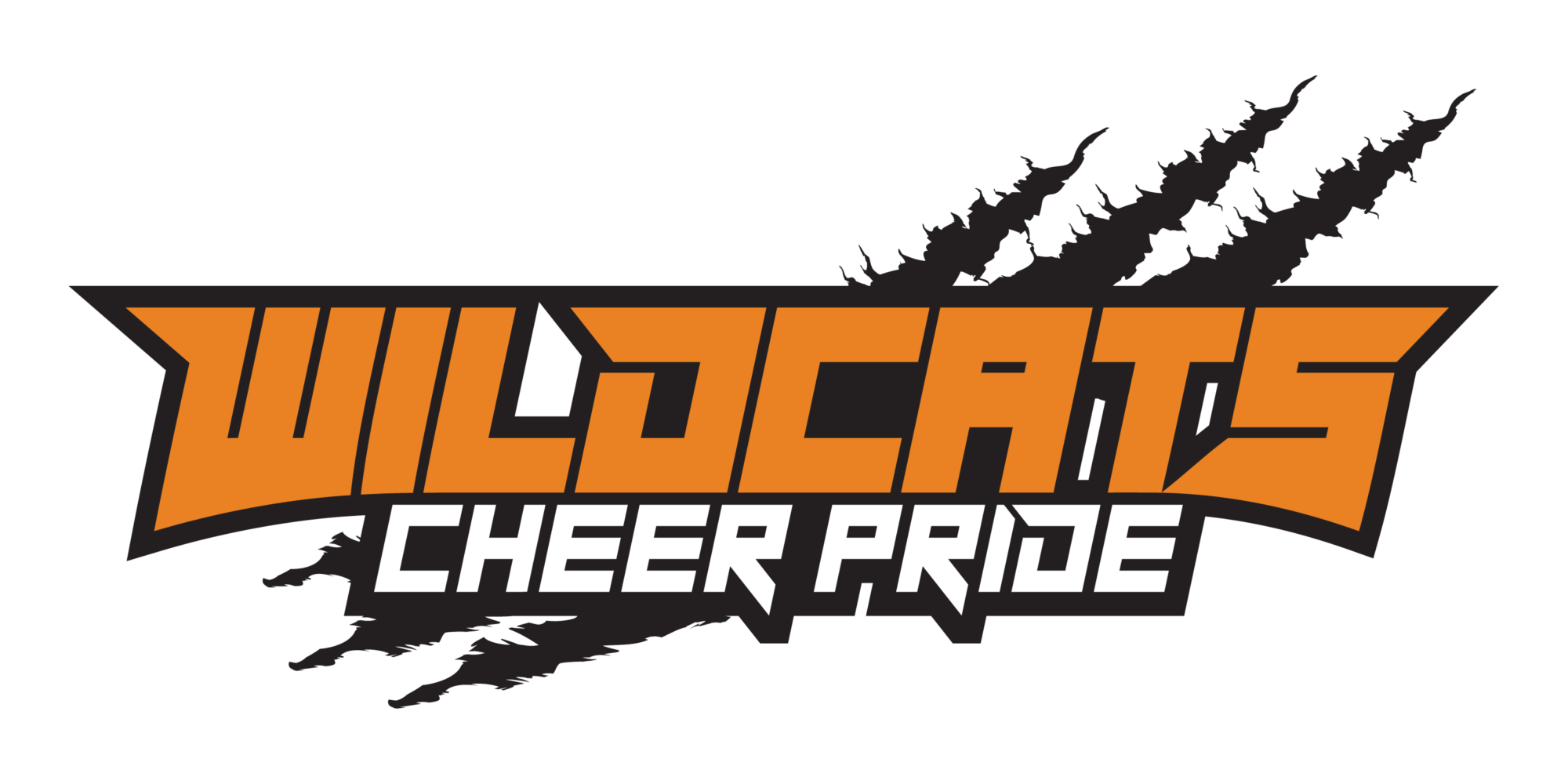 Wildcats Cheer Pride
